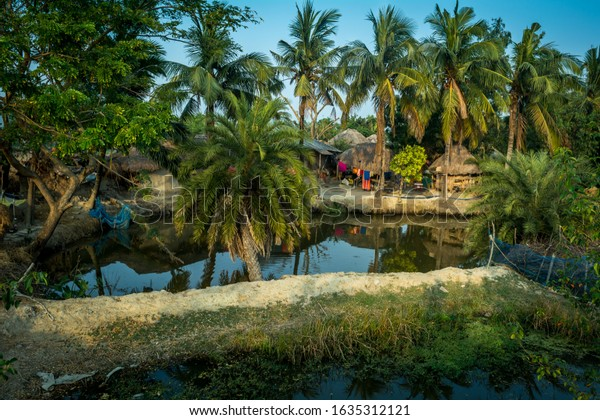 A beautiful village landscape on a sine spring afternoon from Sundarban of West Bengal, India