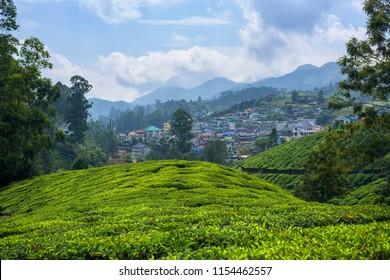Beautiful village and tea plantations in Munnar, Kerala, India.