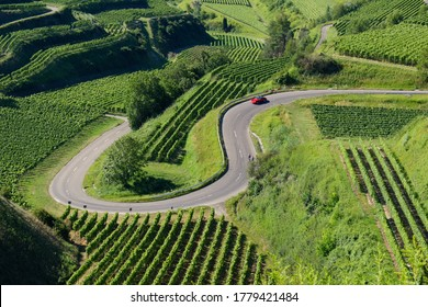 Beautiful vineyard landscape showing a red car driving down a curvy mountain pass road at the Kaiserstuhl, Germany.