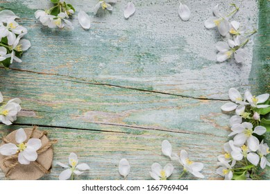 Beautiful vintage background from old blue boards, white spring flowers and round gift box