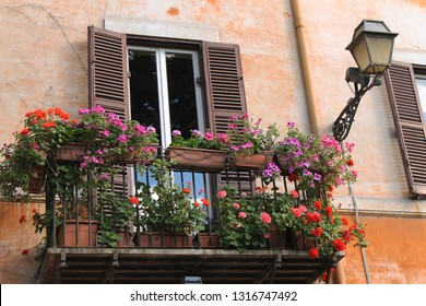 Beautiful vintage balcony with window and colorful flowers in the Trastevere district, Rome, Italy.