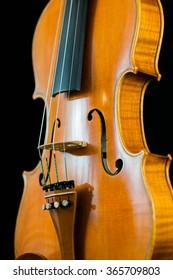 A beautiful violin body.