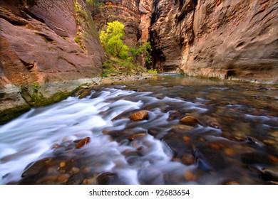 Beautiful Virgin River flows through The Narrows of Zion Canyon in Utah