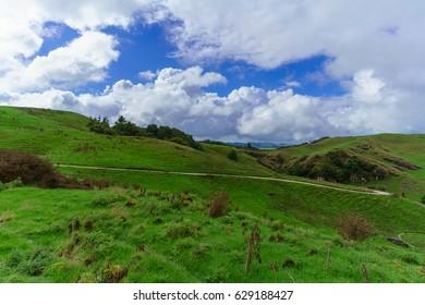 Beautiful Waitomo scenic landscape , New Zealand