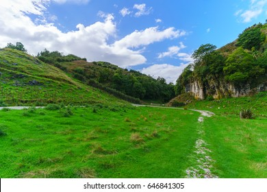Beautiful Waitomo scenic landscape , North Island of New Zealand