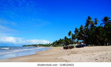 Beautiful walk by sandy beach with palm trees from Maragogi to Japaratinga in Alagoas, Brazil