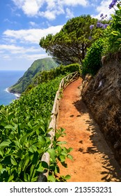 Beautiful walking road near the Atlantic Ocean, Azores, Portugal, Europe