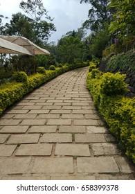 a beautiful walkway