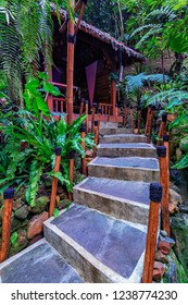 Beautiful walkway in nature to one of the wooden hut in Kampung Daun restaurant, Bandung. Soft focus effect due to large aperture setting.