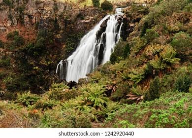 Beautiful Waratah Falls in Waratah, Tasmania after heavy rain fall.