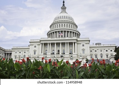 The beautiful Washington Capitol framed by bright red flowers