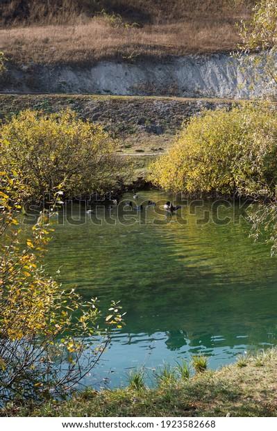 beautiful-water-autumn-landscape-blue-60