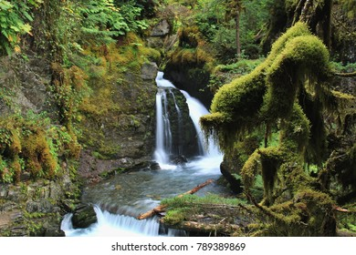 Beautiful water fall in a rain forest