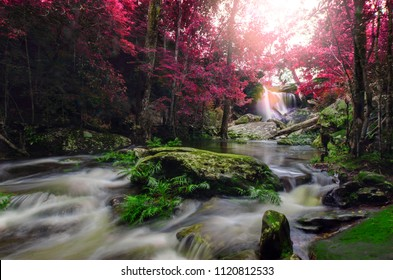 Beautiful waterfall in autumn forest in Phu Kradueng National Park, Loei Thailand