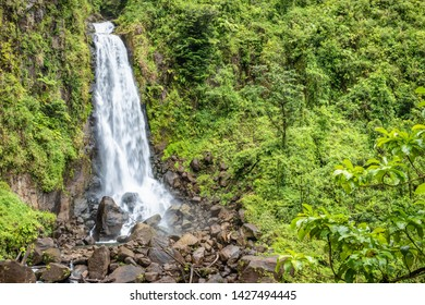 Beautiful waterfall in Dominica, Trafalgar Falls, Caribbean Island.