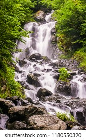 beautiful waterfall in green forest in jungle. A valley with a waterfall in tropical forest of Russia. Russian nature near Sochi, Caucasus Mountains. Waterfall green forest river stream landscape.