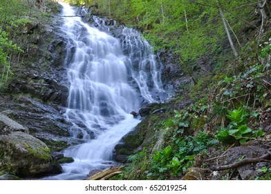 Beautiful waterfall in green forest in jungle. Jungle landscape with flowing red water of waterfall at deep tropical rain forest. National Park Old Mountain, Serbia
