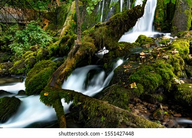 Beautiful waterfall Hot in the village of Perucac, Tara National Park, Serbia. The river is the smallest in the world, only 365 meters. River source and stones covered with moss in untoched nature.