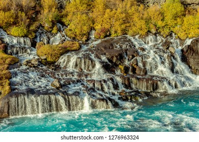 The beautiful waterfall Hraunfossar in western Iceland with turquoise water passing through bright yellow  autumn colored bushes
