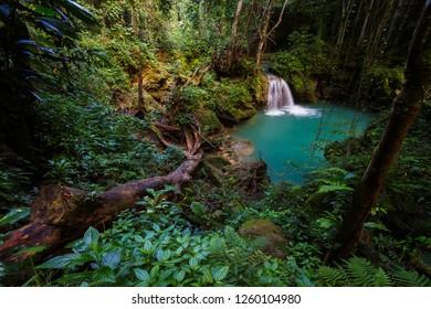 Beautiful waterfall in a lush rainforest
