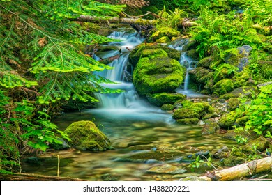 Beautiful Waterfall on the North Fork Placer Creek, Wallace Idaho