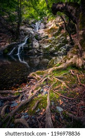 Beautiful waterfall on a small river with a big tree in the foreground on Samothrace Island in Greece with sun light falling on some roots