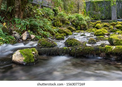 Beautiful waterfall Vrelo in the village of Perucac, National park Tara, Serbia. The river is the smallest river in the world, only 365 meters.River source and stones covered with moss in nature.