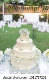 Beautiful wedding cake in the garden.