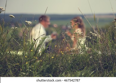 Beautiful wedding couple at picnic with wine and cake on a background of mountains, in the foreground are wildflowers