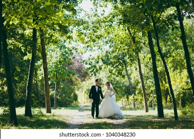 Beautiful wedding photosession. The groom in a black suit with bouquet and his bride in a white lace dress with a long plume and veil smile and walk along the path in large green garden on sunny day.