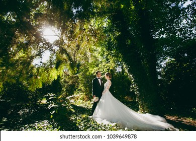 Beautiful wedding photosession. The handsome groom in a black suit, white shirt and glasses with bouquet of flowers and his young cute bride in white lace dress in large green garden on sunny day.