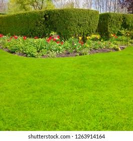 Beautiful well-kept garden