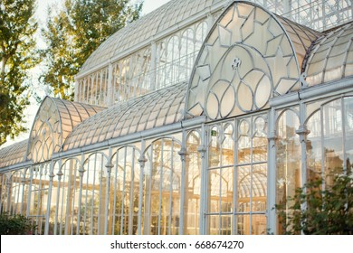 beautiful white antique greenhouse