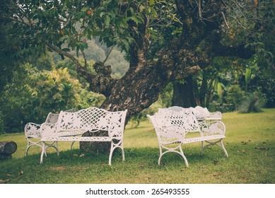 Beautiful white chairs under tree in garden, Thailand - Vintage effect style