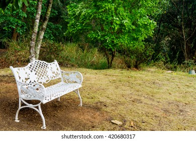 Beautiful white chairs under tree in garden,  Vintage style