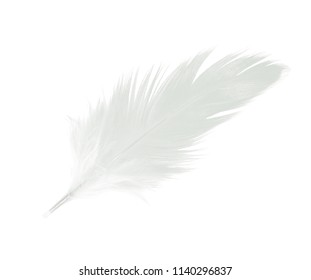 Beautiful white feather floating in air isolated on white background