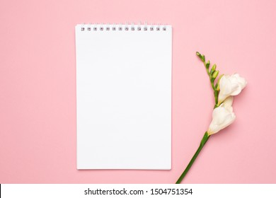 Beautiful white flower and white notebook on pink background
