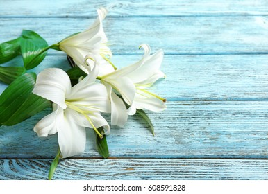 Beautiful white lilies on color wooden background
