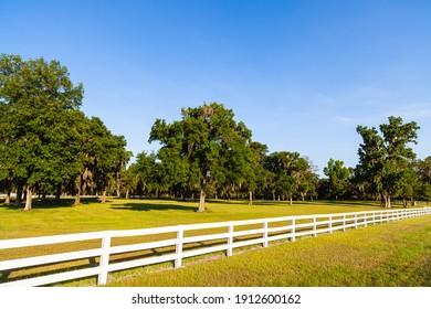 Magnifique paysage de ranch de campagne de palissade blanche.