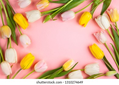 Beautiful white , pink and yellow tulips flowers on pink background. Spring flowers for Happy Easter card or for Mother's day holiday. Flat lay, top view.
