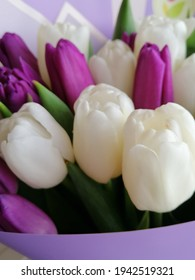 beautiful white and purple pink unopened tulip buds in a delicate violet package in a vase. Floral wallpaper.