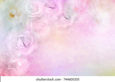 beautiful white roses flower border on soft glitter background for valentine or wedding card in pastel tone ,copy space for text