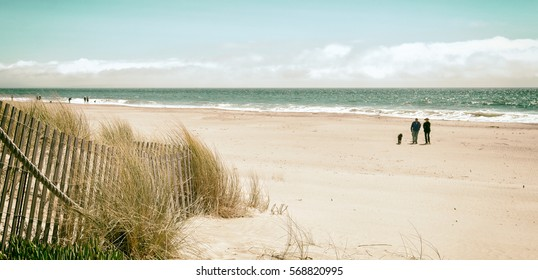 Beautiful white sand beach with dunes, sea grass, ocean and a few people. Vintage color. Location: California north of San Francisco