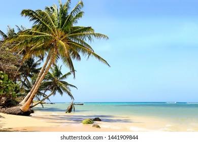 Beautiful white sand beach on the Little Corn Island, Nicaragua