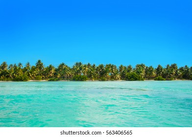 Beautiful white sand beach with palms and blue sea Saona island caribbean sea resort Punta Cana Dominican Republic