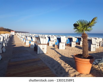 Beautiful white sand beach with wooden boardwalk with many beach chair huts and palm tree at Warnemunde, Germany