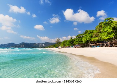 Beautiful white sandy beach in Koh Samui, Thailand. Vacation holidays background wallpaper. View of nice tropical beach with green palms around.