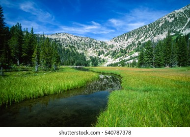 Beautiful wide angle landscape of the outlet of a high alpine mountain lake. Slow moving winding stream flows through the foreground with vivid green grassy meadow and green conifer trees to the sides