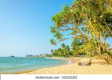 Beautiful wild and exotic beach, Sri Lanka