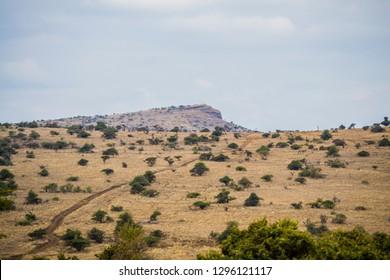 Beautiful wilderness with dry grassland